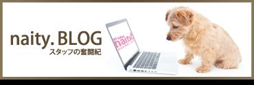 naityブログ